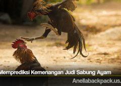 Cara Memprediksi Kemenangan Judi Sabung Ayam