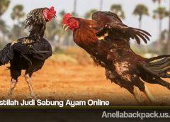 Arti Istilah Judi Sabung Ayam Online