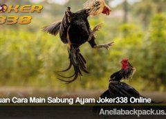 Panduan Cara Main Sabung Ayam Joker338 Online