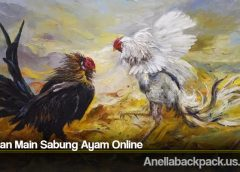 Tahapan Main Sabung Ayam Online